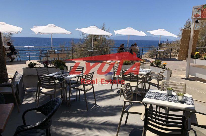 Traspaso negocio en Las Americas Tenerife